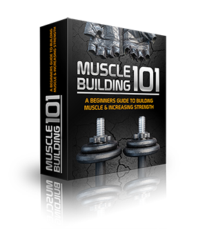 Muscle Building 101. Free PDF Download.